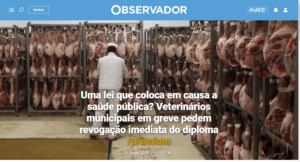 Observador_greve_11e12