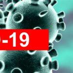 COVID 19 - Medidas de Proteção Social na Doença e na Parentalidade